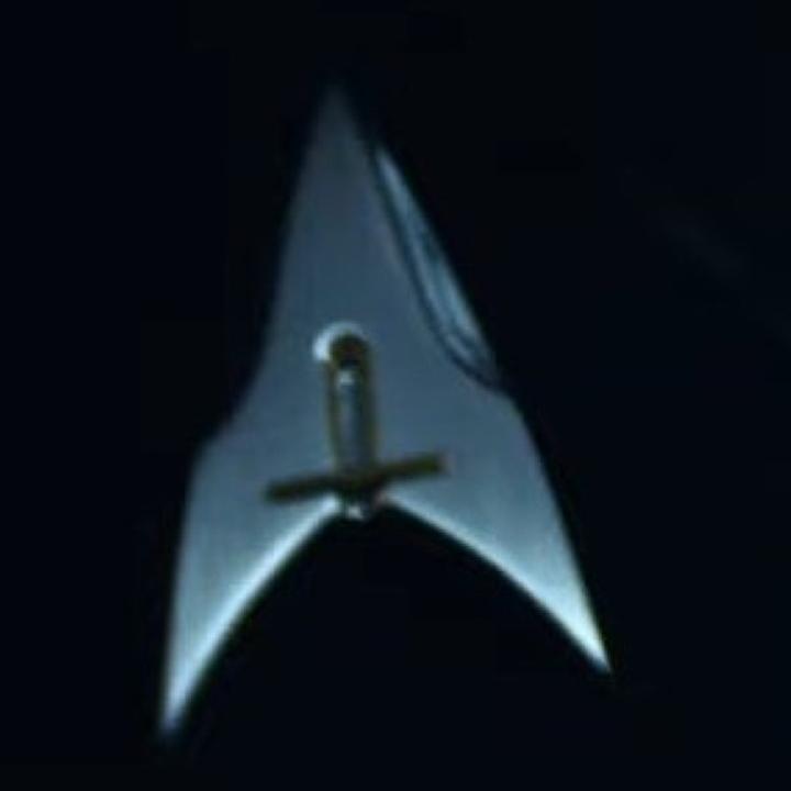 Mal wieder ein alternatives Sternenflottenabzeichen. In der alternativen Zeitlinie von Star Trek Picard Staffel 2 könne der Querbalken für den Rang des Ensings/Fähnrichs stehen